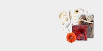 Blumen & Zubehör